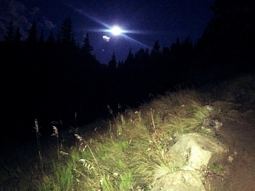 moonlit path_Fotor